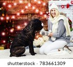woman and dog near christmas... | Shutterstock . vector #783661309