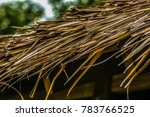 Small photo of Close up traditional south east asian and borneo house thatched roof using natural materials (Cogon Grass, Alang-alang, Lalang, Imperata Cylindrica roof)