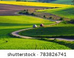 rural landscape with green... | Shutterstock . vector #783826741