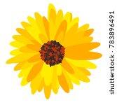 gerbera daisy isolated. vector... | Shutterstock .eps vector #783896491