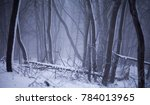 winter landscape in czech... | Shutterstock . vector #784013965