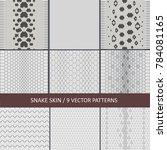 set of vector graphic snake... | Shutterstock .eps vector #784081165