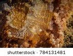 landscape and dead sea in israel   Shutterstock . vector #784131481