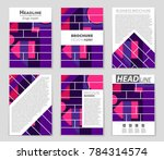 abstract vector layout... | Shutterstock .eps vector #784314574