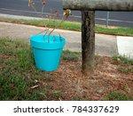an aqua blue pot of plant... | Shutterstock . vector #784337629