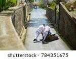famous fun tourist activity in... | Shutterstock . vector #784351675