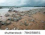 bali  indonesia   december 19 ... | Shutterstock . vector #784358851