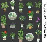 home indoor plants vector hand...   Shutterstock .eps vector #784459474