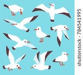 cartoon atlantic seabird ... | Shutterstock . vector #784541995