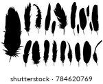 vector  isolated silhouette of... | Shutterstock .eps vector #784620769