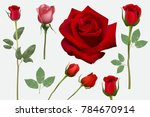 Stock vector realistic roses set vector stock 784670914