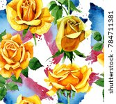 Stock photo wildflower rose flower pattern in a watercolor style full name of the plant yellow rose 784711381