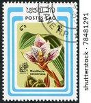 Small photo of LAOS-CIRCA 1985: A stamp printed in the Laos, depicts a flower Maxillaria sanderiana, circa 1985