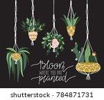 macrame plant hangers in... | Shutterstock .eps vector #784871731