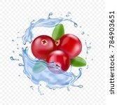 ripe cranberries in water... | Shutterstock .eps vector #784903651