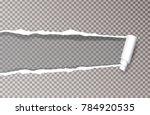 vector transparent horizontal...   Shutterstock .eps vector #784920535