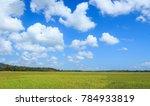 field and blue sky | Shutterstock . vector #784933819