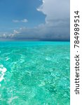 blue clear water and sky... | Shutterstock . vector #784989514