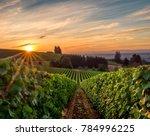Sun Rising Over A Vineyard In...