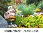 garden gnome in english garden | Shutterstock . vector #785018455