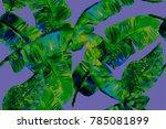 banana leaf tropical seamless... | Shutterstock . vector #785081899