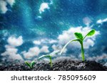 green seedlings growing on the... | Shutterstock . vector #785095609
