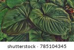 green leaf on the gardent of... | Shutterstock . vector #785104345