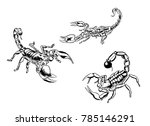 scorpions spider poison venom... | Shutterstock .eps vector #785146291