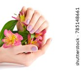 Small photo of Hands of a woman with pink manicure on nails and flowers alstroemeria on a white background