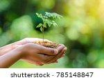 environment in the hands of... | Shutterstock . vector #785148847