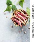 a pod of green beans and beans. ... | Shutterstock . vector #785150551