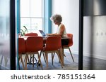 middle aged woman working alone ... | Shutterstock . vector #785151364