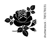 silhouette of a rose. vector... | Shutterstock .eps vector #785178151