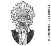 hippo  hippopotamus  behemoth ... | Shutterstock . vector #785188915