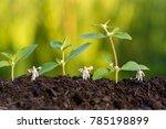 miniature farmer take care... | Shutterstock . vector #785198899