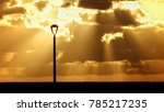 golden sunlights and streetlight | Shutterstock . vector #785217235