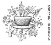 herbal tea vector illustration. ... | Shutterstock .eps vector #785221801
