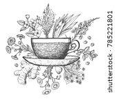 herbal tea vector illustration. ... | Shutterstock .eps vector #785221801