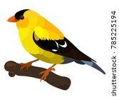 vector flat illustration of...   Shutterstock .eps vector #785225194