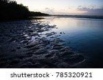 Lagoon And Swamp At Dawn....