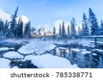 frozen nature wetland at the... | Shutterstock . vector #785338771