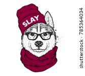 husky in a stylish hat  scarf... | Shutterstock .eps vector #785364034