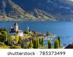 view of lake thun in...   Shutterstock . vector #785373499