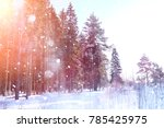winter forest on a sunny day.... | Shutterstock . vector #785425975
