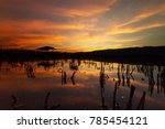 impact of climate change. flood ... | Shutterstock . vector #785454121
