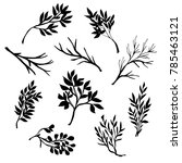 hand drawn tree branches.... | Shutterstock .eps vector #785463121