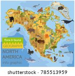 north america flora and fauna... | Shutterstock .eps vector #785513959