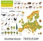 flat european flora and fauna... | Shutterstock .eps vector #785515189