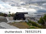 old vintage cannon protecting... | Shutterstock . vector #785525191