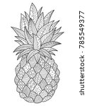 vector doodle coloring book... | Shutterstock .eps vector #785549377
